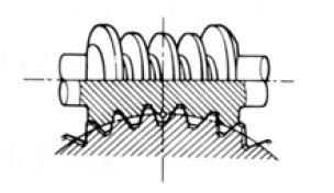 Enveloping Gear Pair internal of Gear Motor