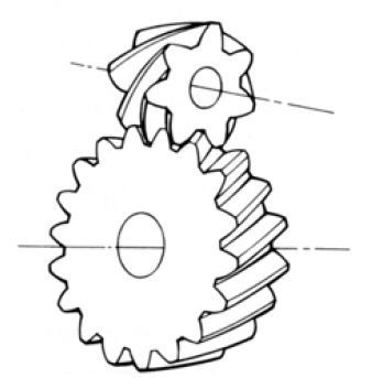 Screw Gear (Crossed Helical Gear) internal of Gear Motor
