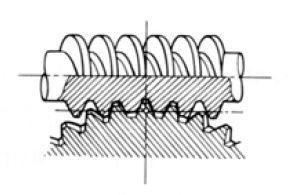 Worm Gear Pair internal of Gear Motor