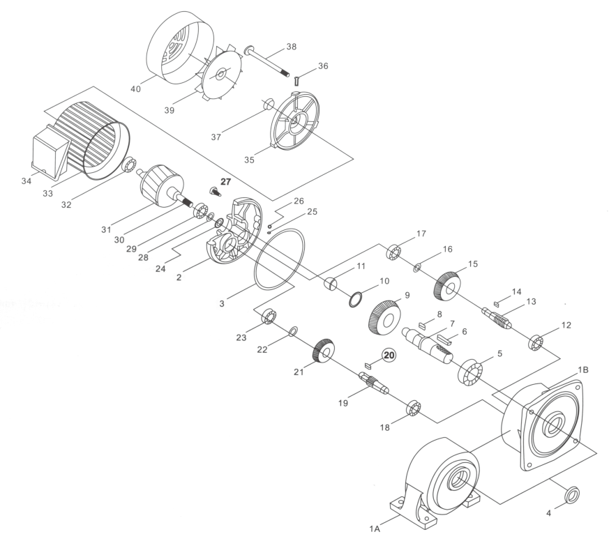 Struct Drawing of Medium Gear Motor