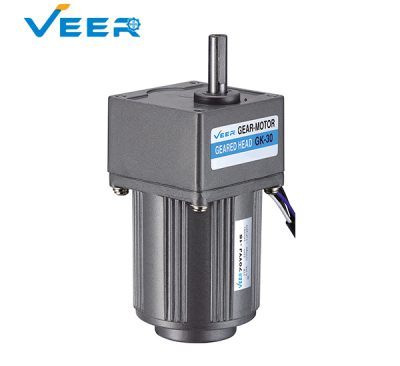 15W Small AC Gear Reducer Motor, Geared Motor, Geared Motor Manufacturer, High-performance Gear Motor, VEER Geared Motor