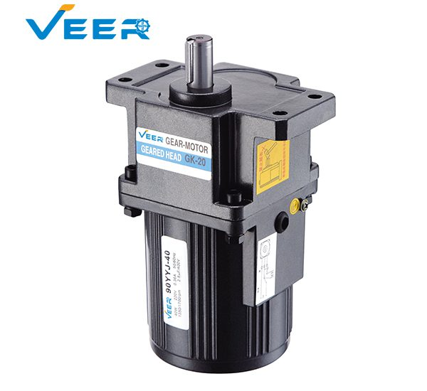 40W GS Small AC Gear Reducer Motor, Geared Motor, Geared Motor Manufacturer, High-performance Gear Motor, VEER Geared Motor