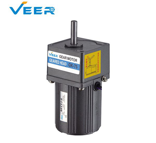 6W Small AC Gear Reducer Motor, Geared Motor, Geared Motor Manufacturer, High-performance Gear Motor, VEER Geared Motor